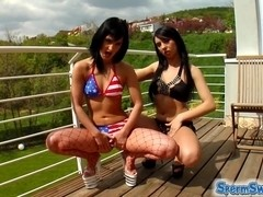 Two brunettes start making out and end up getting fucked by two guys.