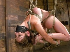 Claire Adams & Felony in Welcome Felony To Her Fist HogTied Shoot. 34d-24-34 Are Our New Favorite .