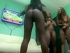 Hawt college beauties show us their ass shaking skills