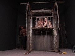 HouseOfTaboo Video: Caged For His Pleasure!