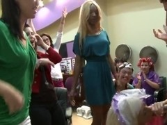 Party in the Salon