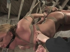 Kylie Wilde returns to Hogtied It's 4 years later, and she's hotter than ever.