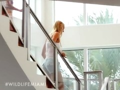 THE WILD LIFE : MIAMI, Season #1 Ep.1