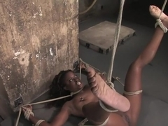Hogtied welcome sexy MILF Monique for her first hardcore bondage experience.