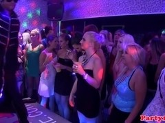 Real euro bachelorette being ravaged by stripper