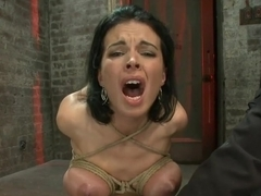 A pussy that swells up when you make it cum & cum & cum.Suffering never looked so beautiful.