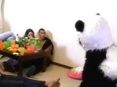 A sex party with a panda is a good sex party