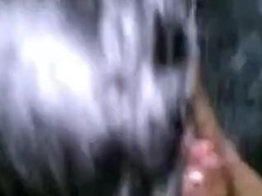 Cute Glassed  immature Blows Her BF's Strapon