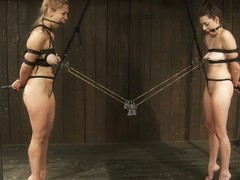 Isis Love & Missy Minks & Audrey Rose in Taut pussies, bound tits, prancing whores - DeviceBondage