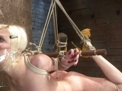 Cherry Torn in Cherry Torn Live Part 2 - HogTied