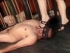 Mistress plays with her slaves balls