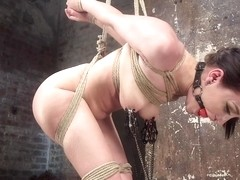 Gabriella Paltrova  The Pope in Petite Bondage Slut Gets Her Holes Destroyed In Grueling Bondage -.